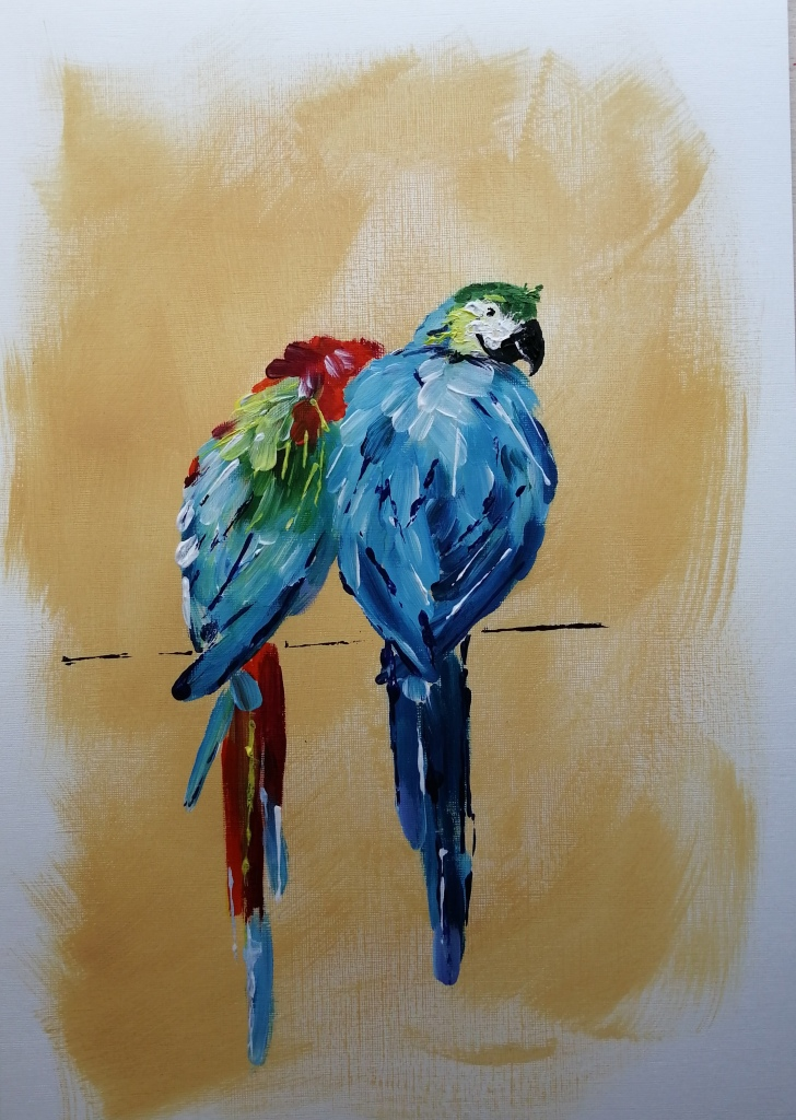 'Rainbow Rainforest Macaws'