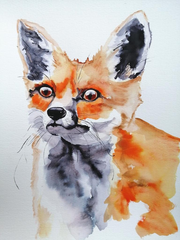 'Vixen' Fox