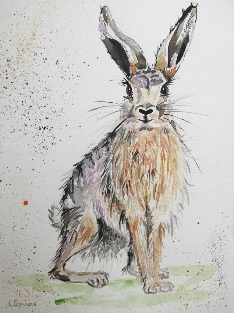 'Dawn Hare'